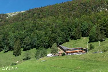 200709_Repo_Solothurn_WM-55.jpg