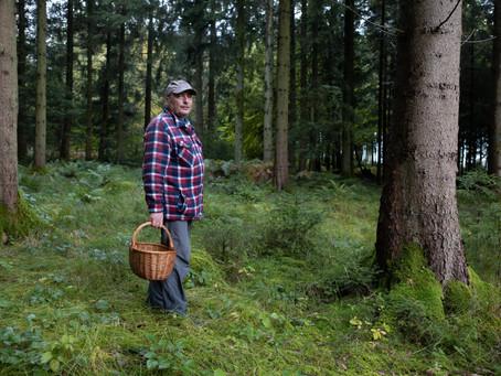 Auf der Suche nach Pilzen und Anerkennung: Wie Markus Flück Autor wurde