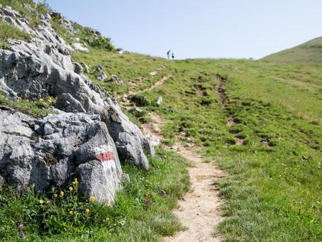Bergwandern kann gefährlich sein: Mit diesen Tipps und Apps sind Sie sicher unterwegs