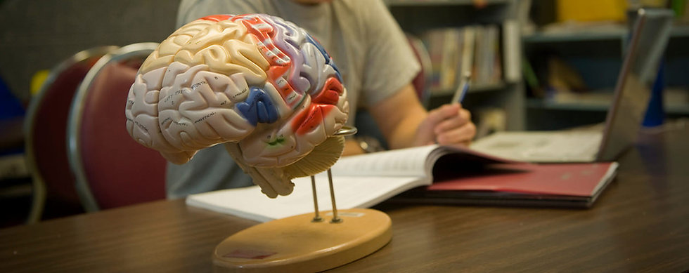 Psychology Department Image.jpg