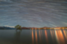 Wanaka Tree StarTrails small.jpg