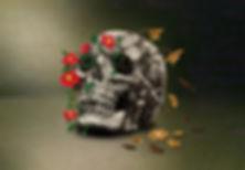 Withered Skull Final v2.jpg