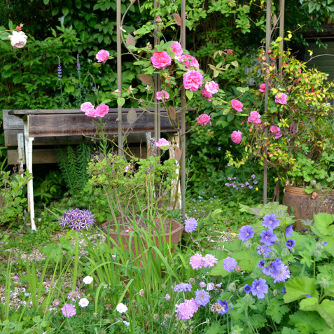 A seating area in a cottage garden