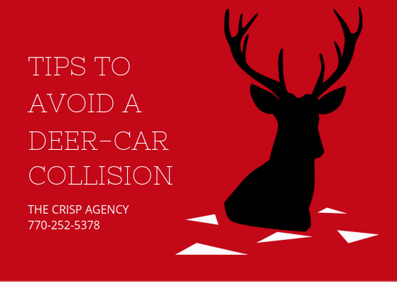 While we are not in peak deer season, deer- car collisions still happen. Call The Crisp Agency for all of your insurance needs. We specialize in auto, home, life and small business insurance. We serve coweta and fayette county and the surrounding areas. Newnan, Sharpsburg, Peachtree City, Senoia, Moreland, Grantville.