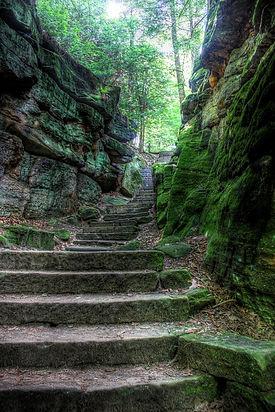 stairs-675909_960_720.jpg