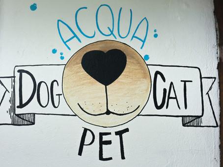 ACQUA PET - Uma sala de banho completa para seu pet!