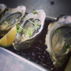 Oysters at #foodloverscookshop #foodlovers_cookshop #chefnouveaucatering