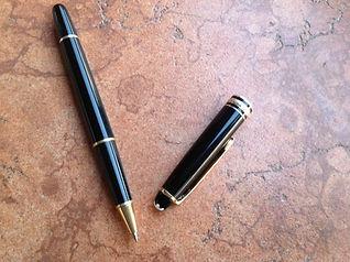 DSH. pen photo.JPG