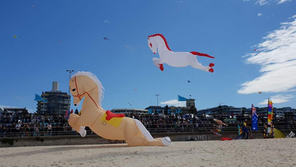 Herman and Ina Plattje. Our 2 horses flying over Bondi Beach :-) We participated in the Festival of the Winds in 2018 and we enjoyed it VERY much. The picture sent is one from our horses and won the Publictrophy. We are very, the trophy stand in ou living room.