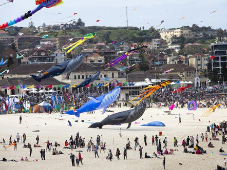 2013 Beach Kites