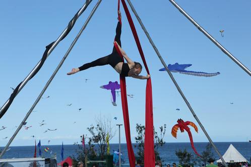 2016 Aerialize Performers (photo: Amy Janowski)