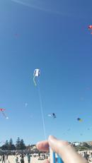 Me flying my kite in 2018 by Scott