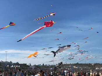 This is from Bondi Wind Festival 2017. I remember seeing this festival with my family and brothers, lots of under water creatures kites, lovely day. I wish 2020 festival still going. By Jimmy.