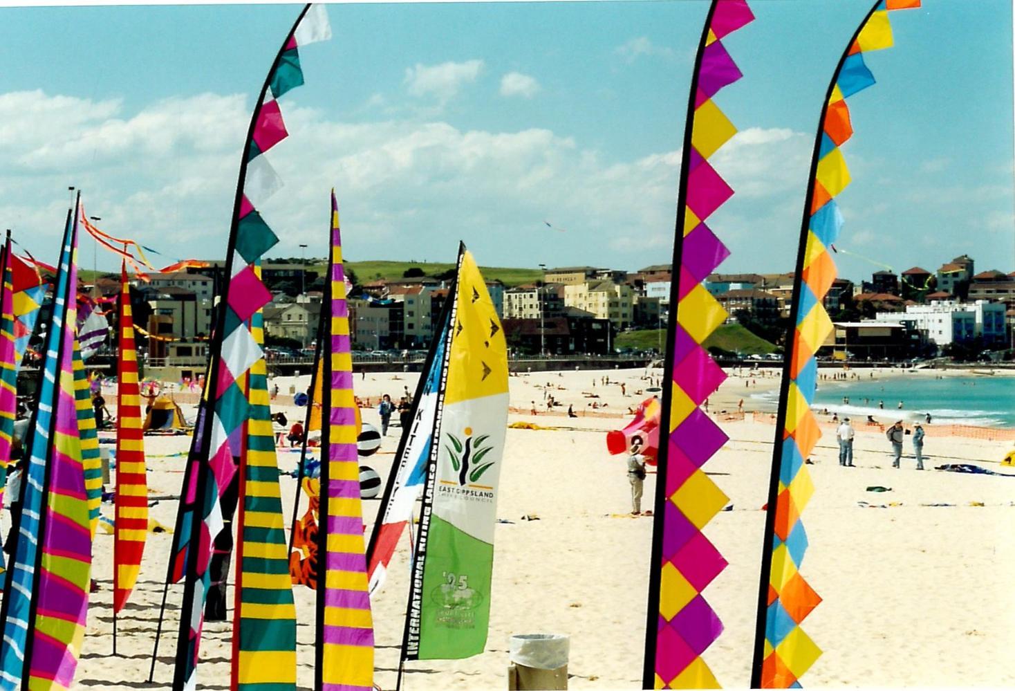 2001 Beach Flags