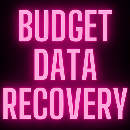 Budget Data Recovery