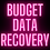 Thumbnail: Budget Data Recovery