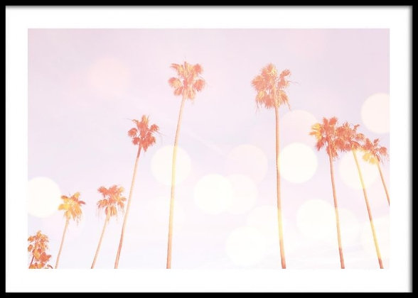 Palm Trees Dream Print No.1 - Palm Tree Poster