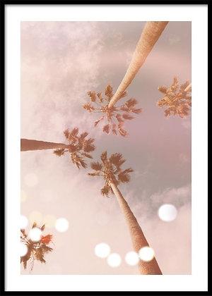 Palm Trees Dream Print No.2 - Palm Tree Poster