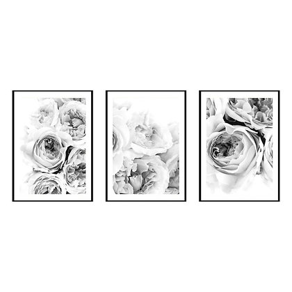 Black & White Peonies Print - Set of 3 Prints
