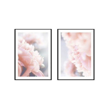 Blush Pink Peonies Prints - Set of 2 Prints
