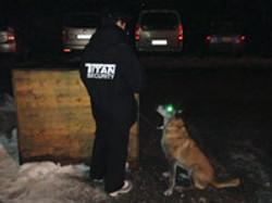 Sicherung mit Wachhund