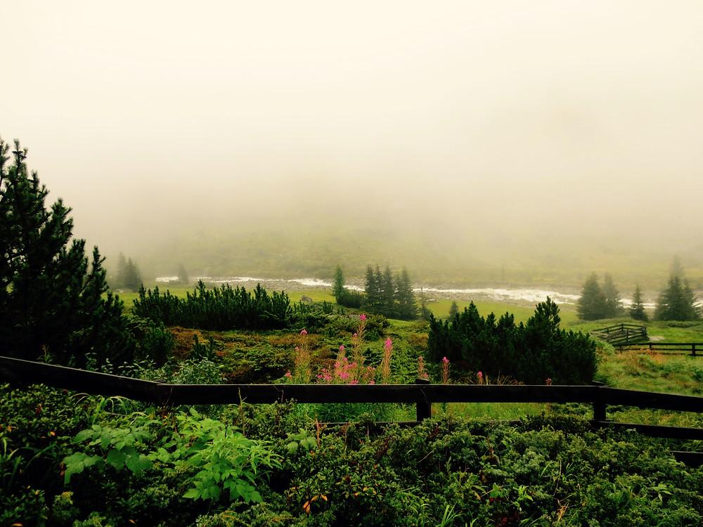 Die Alm im Nebel