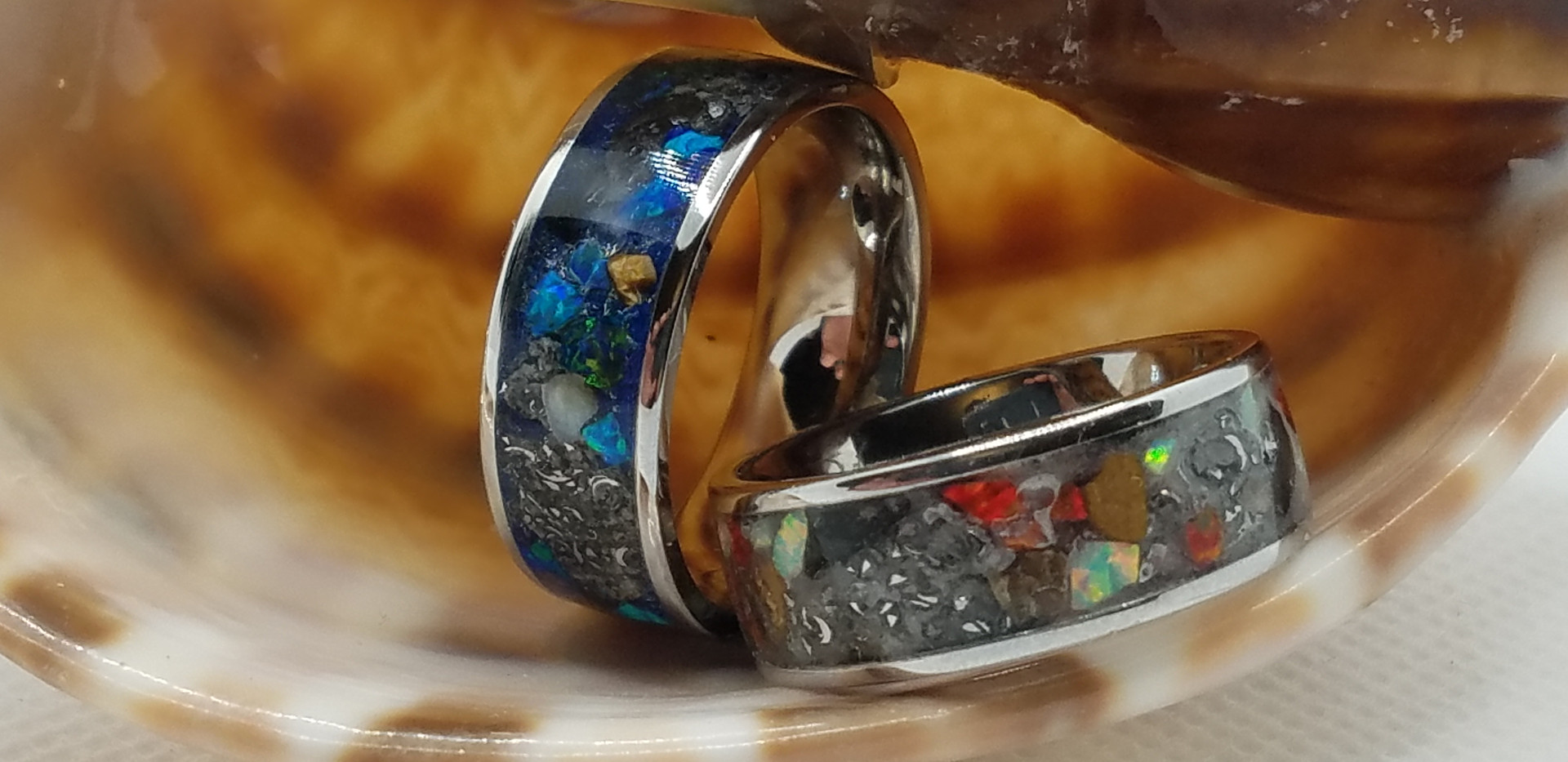 A pair of rings sit in the opening of a seashell