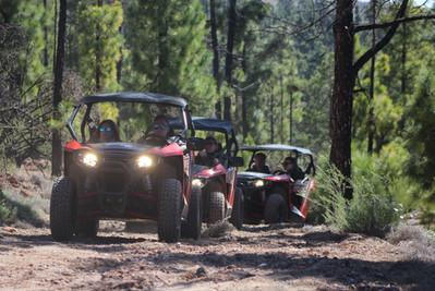 buggy-safari-header-1.jpg