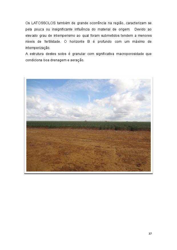 Queijo minas-page-038.jpg