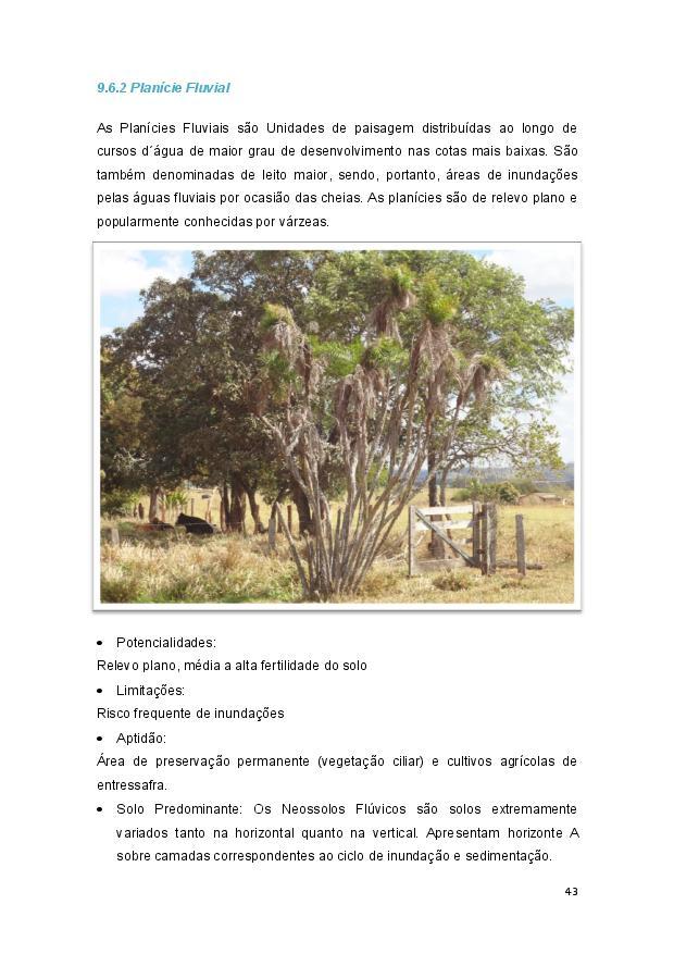 Queijo minas-page-044.jpg