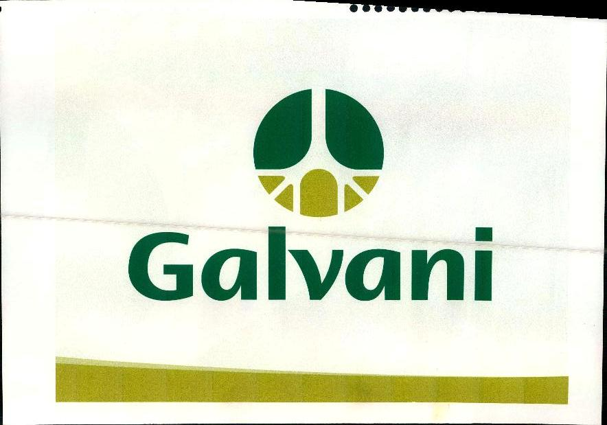 GALVANI-page-025.jpg