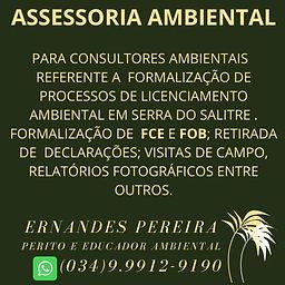 Verde_Ícone_de_Árvore_Meio_Ambiente_Lo