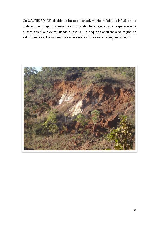 Queijo minas-page-037.jpg