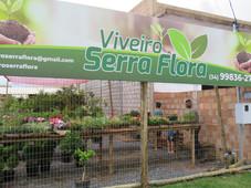 VIVEIRO SERRA FLORA - NOVA MARAVILHA EM SERRA DO SALITRE – MG