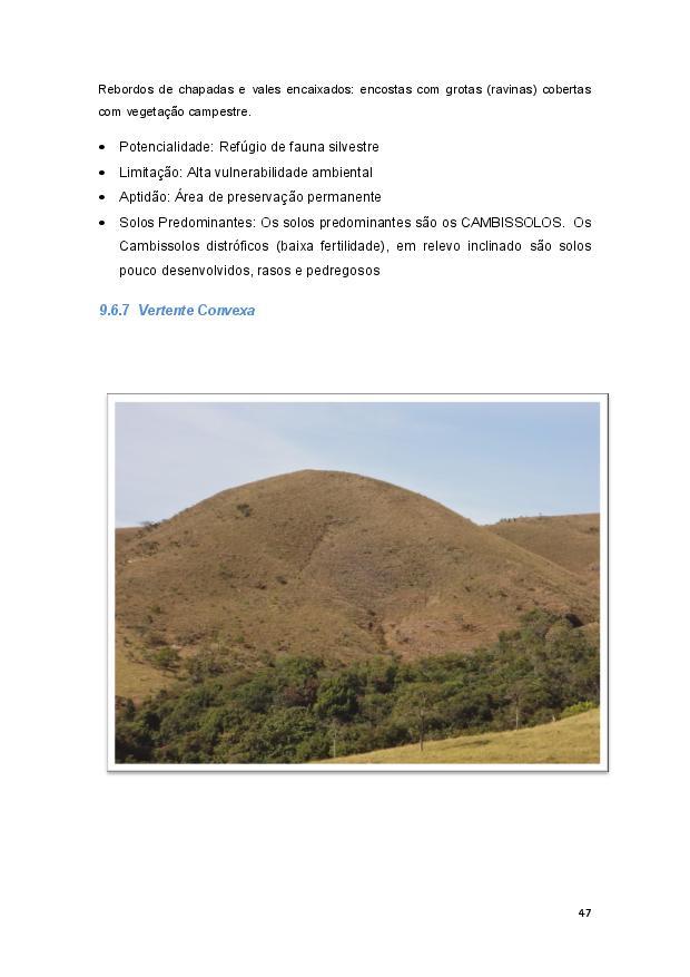 Queijo minas-page-048.jpg