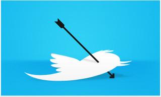 Twit for Twat