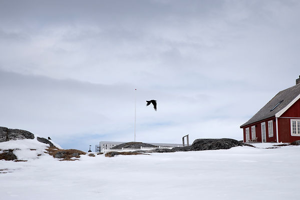 Groenland-14.jpg