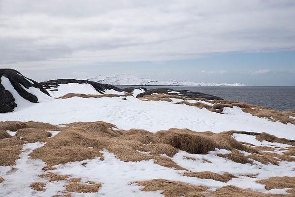 Groenland-13.jpg