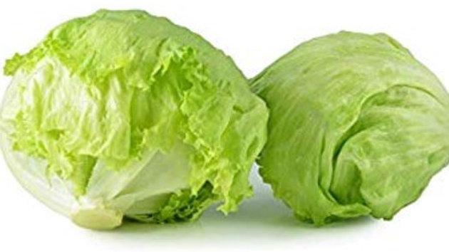 Iceberg Lettuce - Head