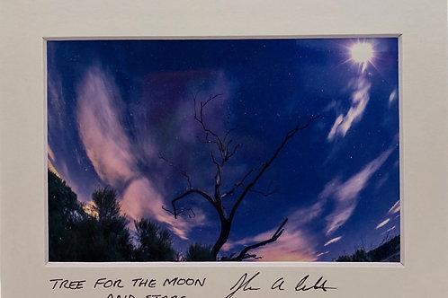 """""""Trifid Nebula"""""""