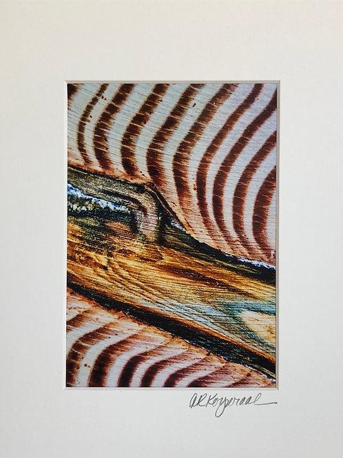 """Wood Grain"""