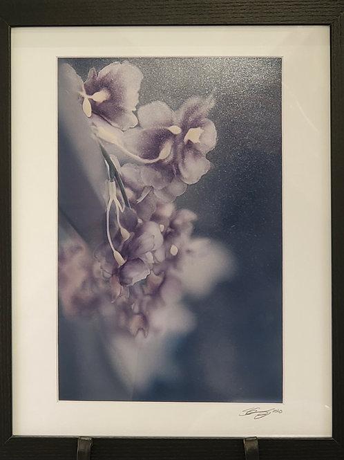 """Silky Smooth"" Photograph"