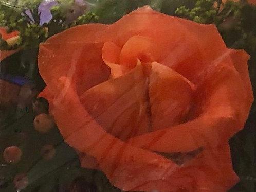 """""""Orange Rose"""" Card"""