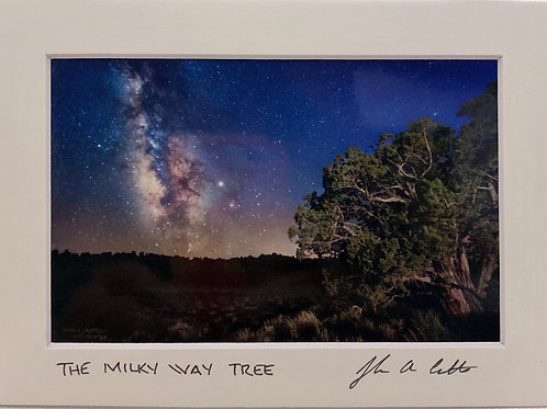 """Milky Way Tree"""