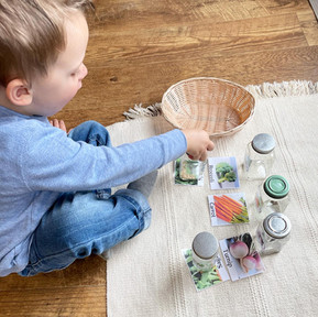 HOME RECOMMENDATIONS: Toddler Classroom