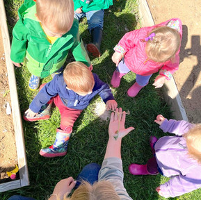 HOME RECOMMENDATIONS: Emergent Toddler Classroom