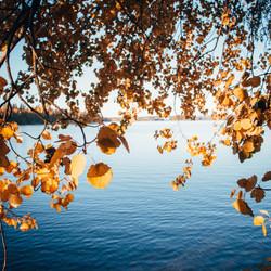 lake5.jpg