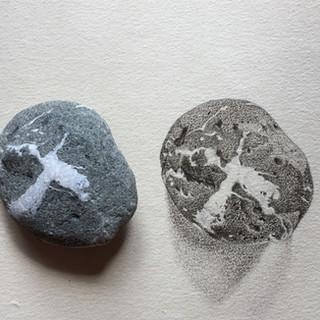 FatX stone