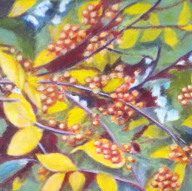 Branch with Golden Berries