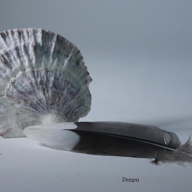 Dream  (Meditative Series)